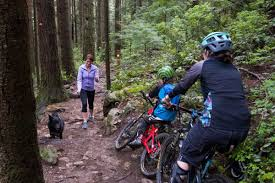 Yield appropriately when mountain bike trail riding