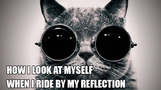 Cycling mems: How I look at myself when I ride by my reflection