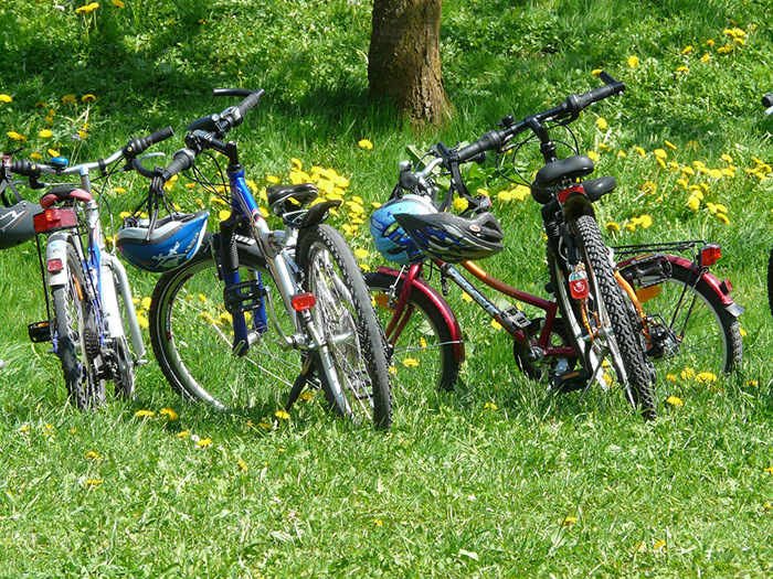 parked mountain bikes