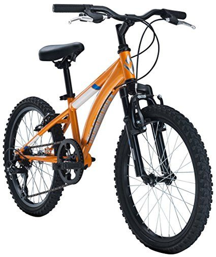 Diamondback Cobra 20 Mountain Bikes for Kids