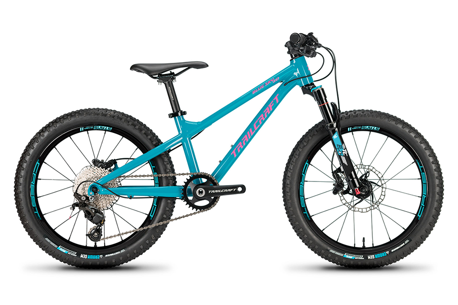 Trailcraft Blue Sky 20 Mountain Bike